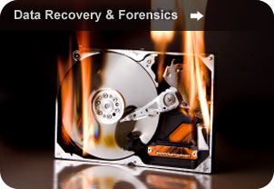 Data Recovery & Forensics
